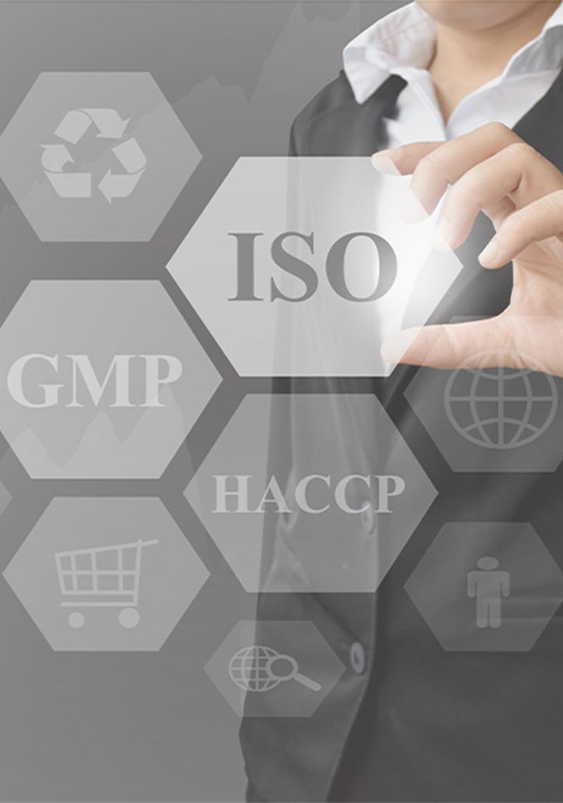 Na slici se nalazi više standarda, no najistaknutiji je ISO standard kojeg implementira Top Consult Grupa